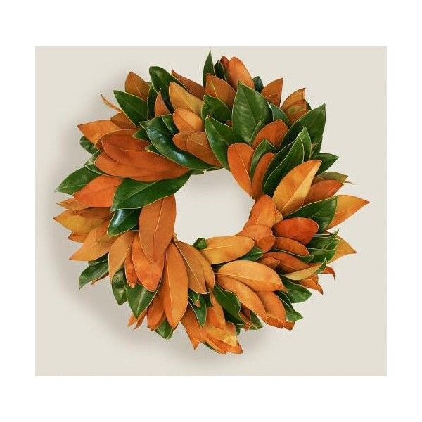 Cost Plus World Market Live Magnolia Wreath ($60) ❤ liked on Polyvore featuring home, home decor, magnolia home decor, magnolia leaf wreath, magnolia wreath, cost plus world market and harvest wreath
