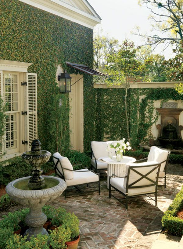 25+ Best Ideas About Ivy Wall On Pinterest