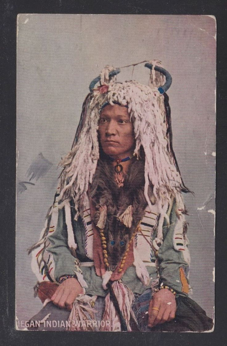 Usa 1909 piegan indian warrior native american