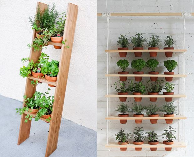 5 ideias de como fazer uma mini horta para a sua casa