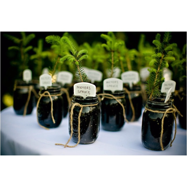 Wedding Gifts For The Guests : ... weddings picnic weddings eco friendly party favors party gifts shower