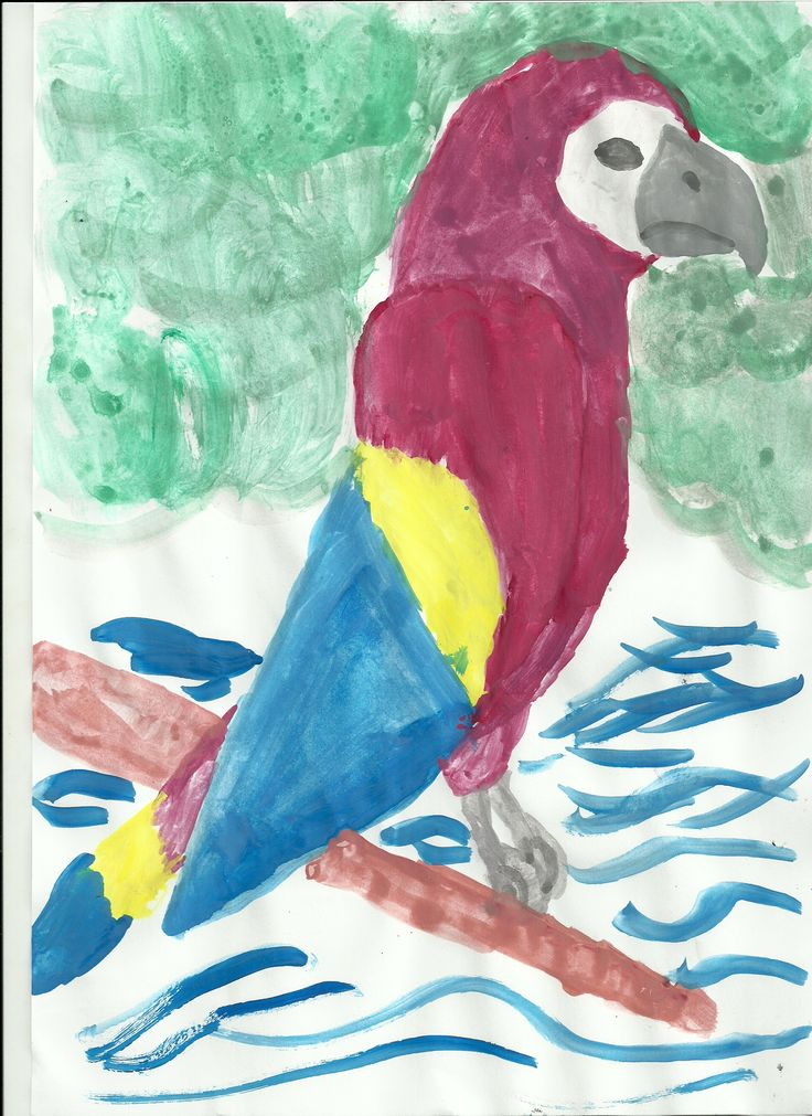 The serious parrot by Nora (7)