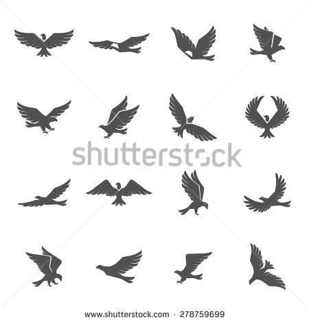 Different eagle birds spreding their wings and flying icons set isolated vector illustration - stock vector