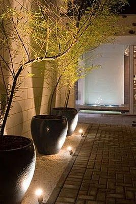 Individually light large flower pots for dramatic effect. Stunning.