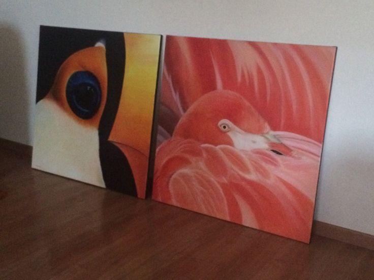 #expositie #vanessaraaphorst #toekan #flamingo #schilderij  Kijk op www.vanessaraaphorst.nl voor meer werk van deze kunstenaar