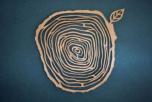 tree rings | tree ring by smoothpebble                                                                                                                                                                                 More