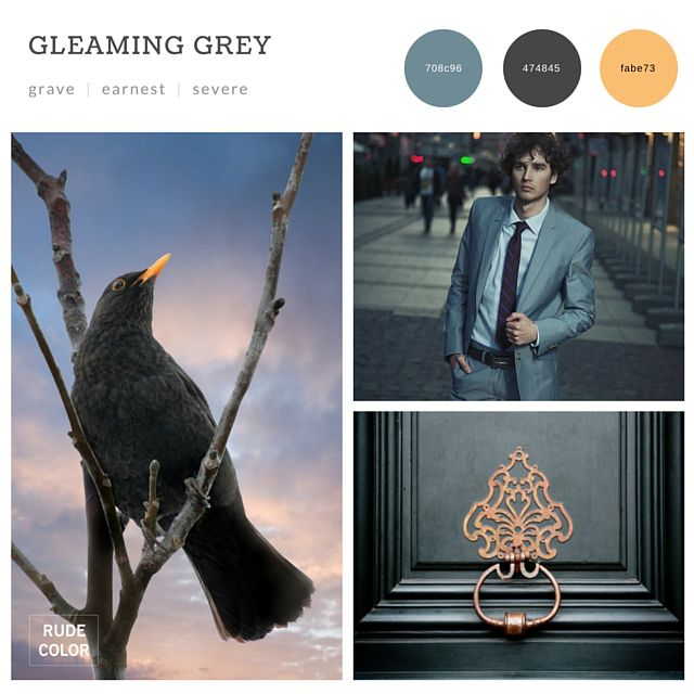 #2016 #color #trends #combinations #schemes #design #web #graphic #interior #architecture #inspiration #mood #board #collage #grey #shades #elegant #formidable