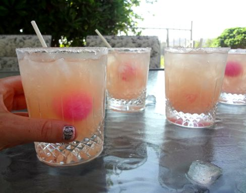 one shot of vodka and fill with grapefruit juice then add a pink blowpop dipped in sugar....uhm, what happens to the gum????: Drinky Drinkies, Grapefruit Juice, Drink Drank Letsgetdrunk, Greyhound Gin Vodka, Girls Lake, Favorite Drinks, Food Drinkkks