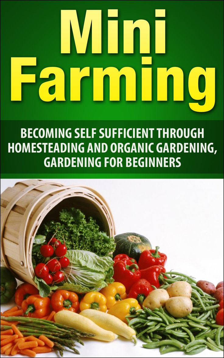 Mini Farming: Becoming Self Sufficient Through Homesteading And Organic  Gardening, Gardening For Beginners (