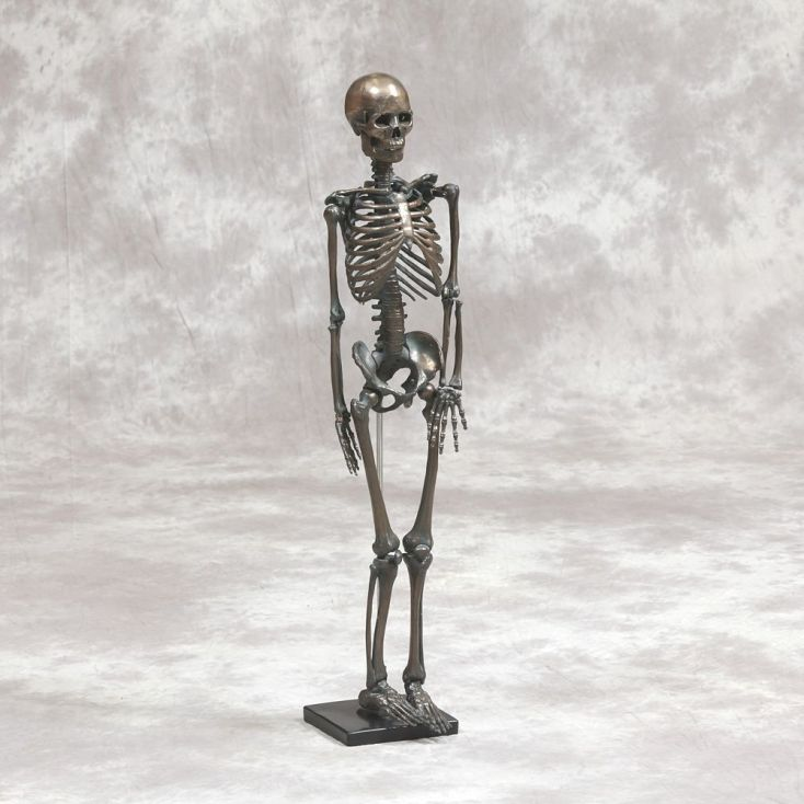 Smithers old antique style Skeleton is 82 cm high with a vintage bronze effect coating. He's made from fibreglass and resin, and makes a really quirky conversation piece for the home, office or your man cave bar. The Skeleton's eerie frame will add drama to any space, whilst the superb detailing and antique finish offer classic styling and ultimate longevity.