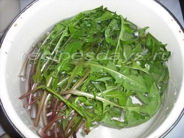 рецепты салатов из листьев одуванчика