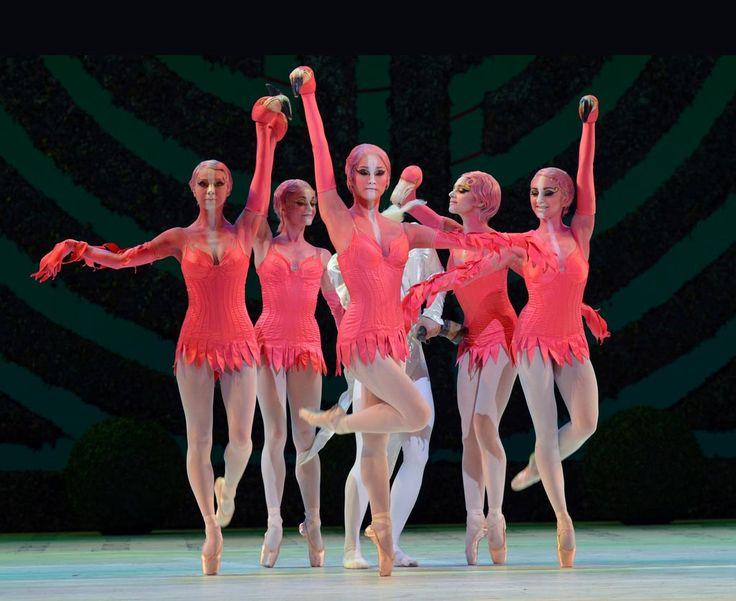 The Flamingoes in Alice's Adventures in Wonderland: Jacqueline Clark, Anna-Rose O'Sullivan, Fumi Kaneko, Romany Pajdak and Gemma Pitc...