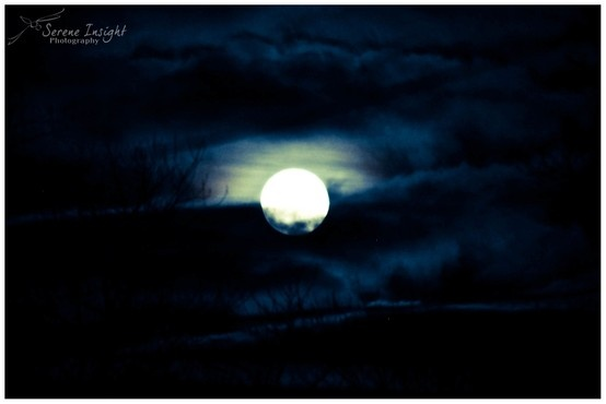 moonlit sky