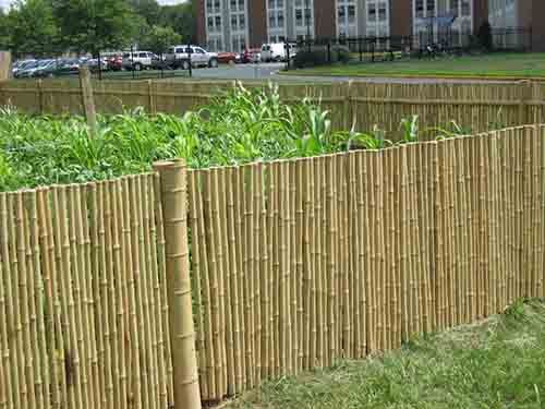 How To Install Your Own Bamboo Fence   LivingGreenAndFrugally.com