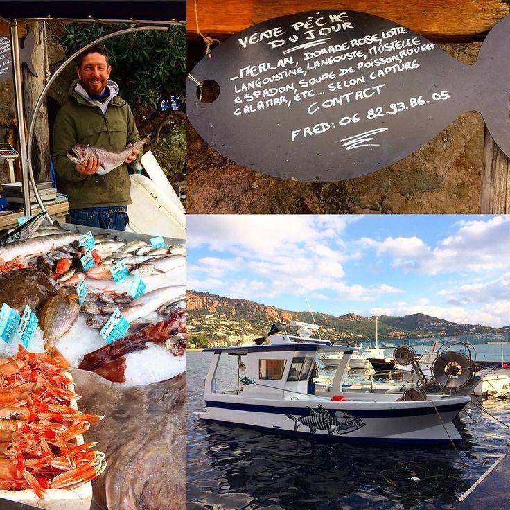 Vente de la pêche du jour tous les matins au port d'Agay avec le sympathique Frédéric #poisson #peche #merlan #dorade #lotte #langoustine #langouste  #espadon #agay #port #pecheur #fish #pesce #pescatore #fisherman #fisch #fischer #porto #fischereihafen #harbor #var #visitesterel #visitvar #mysaintraphael #cotedazur #cotedazurnow #cotedazurfrance #pin #routard