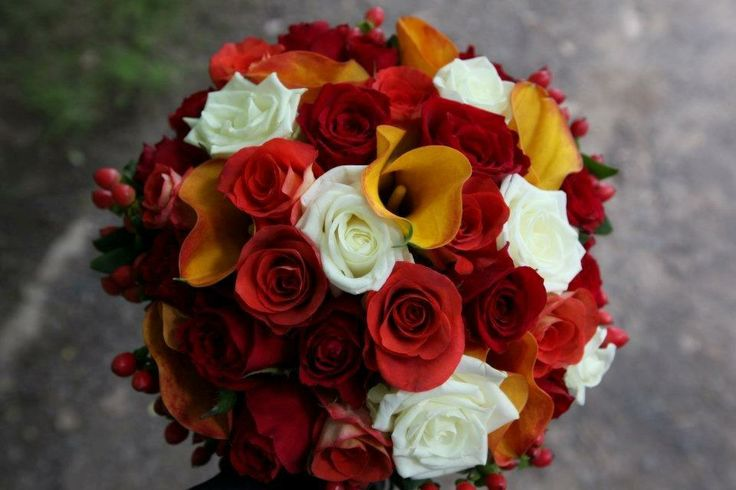 callas and roses with hypericum berries