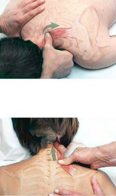 preliminaries of a hard massage spreading oil