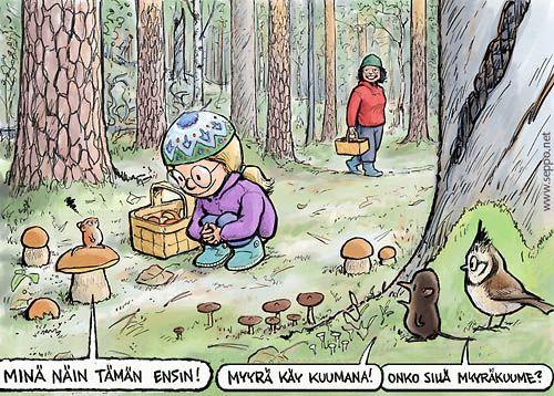 Sieniretki, keywords:  sieniretki sienestys metsä tyttö mummo herkkutatti metsämyyrä töyhtötiainen metsäpäästäinen myyrä päästäinen mänty mäntykangas piirros ulkoilu hyötyliikunta pilapiirros