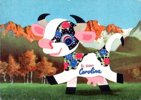 mucca Carolina