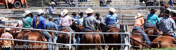Muswellbrook Charity Rodeo & Campdraft - Bling in the Pits!  Www.dustydiamonds.com.au