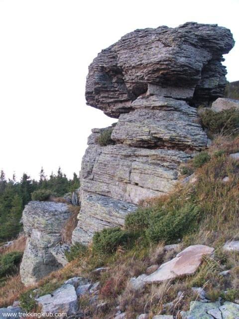 Mushroom-shaped #rocks of Harghita-Ciceu