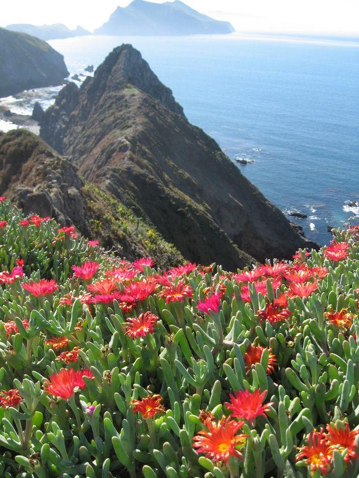 Inspiration Point, Anacapa Island ~ Channel Islands National Park ~ Ventura, California
