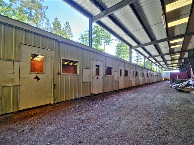 Equestrian heaven. Was used for training and boarding. 16 stalls covered with hay feeding.