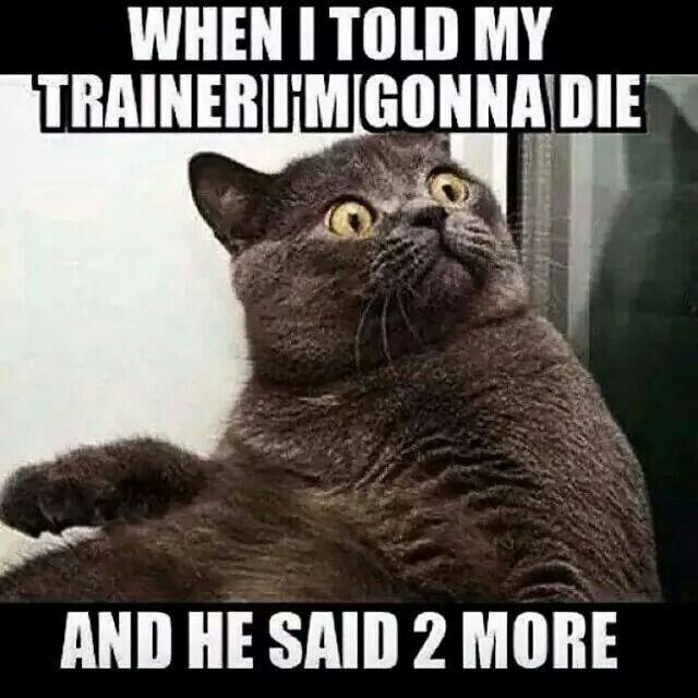 Funny fitness inspiration. We've all been here, right?