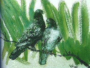 Orhan Peker-Güvercinler