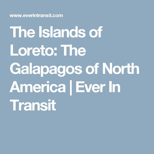 The Islands of Loreto: The Galapagos of North America | Ever In Transit