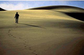 Η ΔΙΑΔΡΟΜΗ ®: Τεστ προσωπικότητας: Η μοναξιά της ερήμου