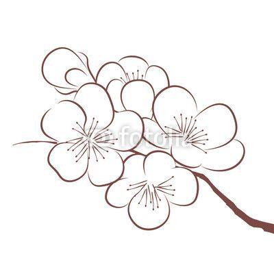 Printemps fleur de cerisier