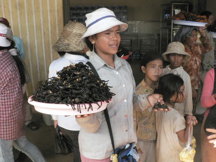 Deep fried tarantulas being sold