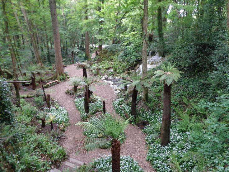 207 Best Images About Fantasy Garden Ideas On Pinterest Gardens Ferns Gard