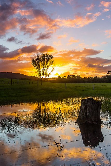 Love this shot of the sun reflecting in the laying water. Only get the good sunsets on the country side