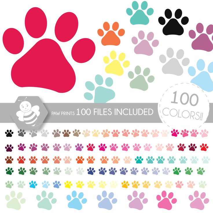 Paw Print Clipart, Animal Clipart, Clip Art, Dog Clipart, Cat Clipart,  Planner Clipart, Scrapbooking Cliparts, CL0035 by Sweetdesignhive on Etsy