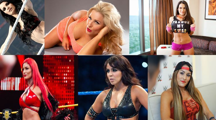 Top 10 Richest And Hottest WWE Divas 2016