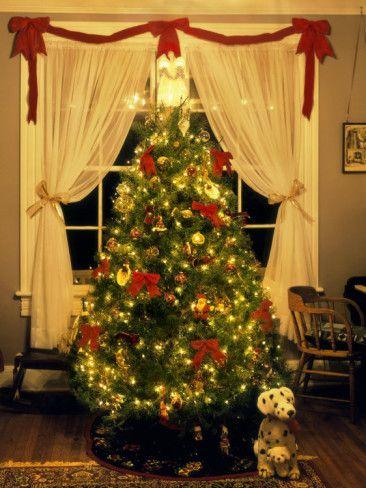 Decorated Christmas Tree Displays in Window, Oregon, USA Photographic Print