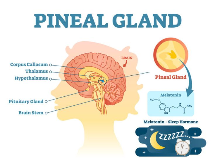 how to decalcify pineal gland fast
