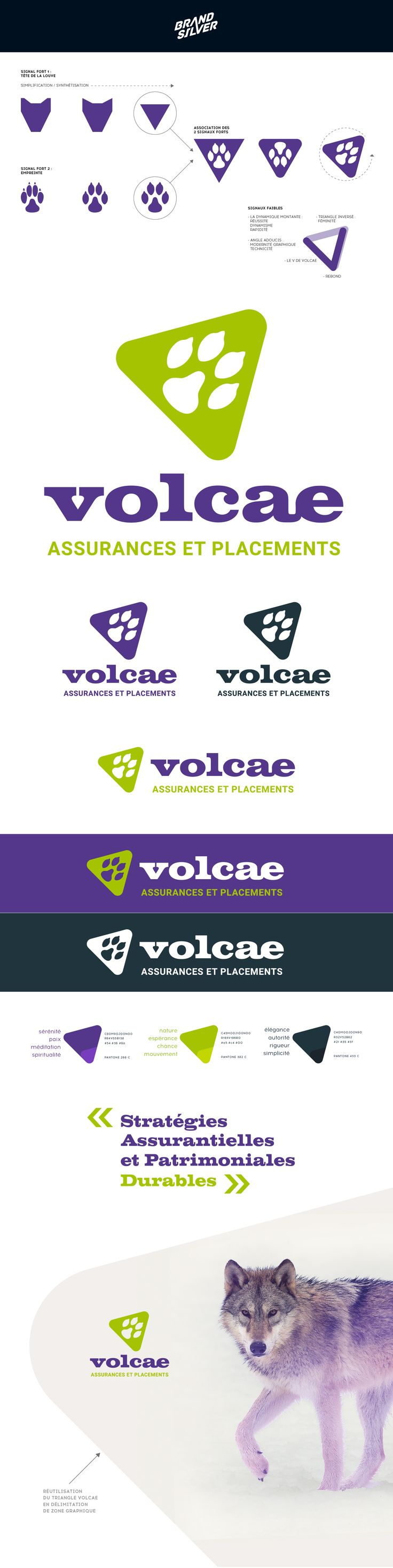 Wolf - Volcae new brand 2017 - Insurance and Investments