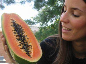 Proprietà nutritive della papaia