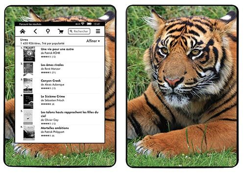 SKIN AMAZON KINDLE PAPERWHITE - TIGRE DE SUMATRA