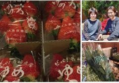 ディナー営業 スタートしました  昨日農家さんより直送で色んな野菜や果物が届きました  香川産玉葱を使用したドレッシングも出来立てです  自家製生タマネギドレッシングで美味しくて新鮮なサラダは如何ですか  販売もしていますよ_  農家さん直送の新鮮なお野菜たくさんでお待ちしています_  http://ift.tt/1swOwqz   //////////////////////////////////////////// さくさくパイ生地ピザのお店 イタリアンバジル薬院店 ランチ 11時半15時 ディナー 18翌朝5時 福岡市中央区薬院4-1-10 共立薬院ビル1F TEL 092-522-3900 ////////////////////////////////////////////  #薬院 #イタリアン #パスタ #ペンネ #カジュアル #個室あり #オーガニック #無農薬 #国産 #イタリア産 #ピザ #ドレッシング #香川産玉葱 #自家製 #農家直送 #無農薬無化学肥料栽培 #ほうれん草 #水菜 #サニーレタス #苺 #蜜柑 #胡瓜 #ピーマン #トマト #椎茸…