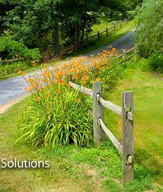 split rail landscape on Pinterest | Split Rail Fence, Fencing and ...