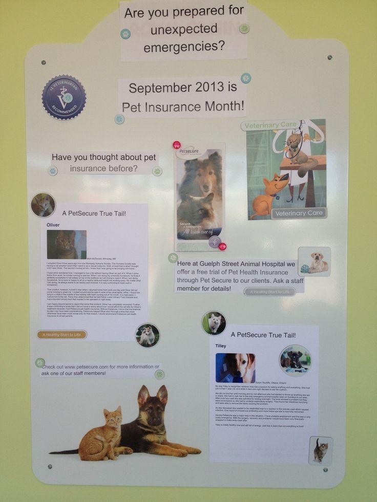 Guelph Street Animal Hospital Animal hospital