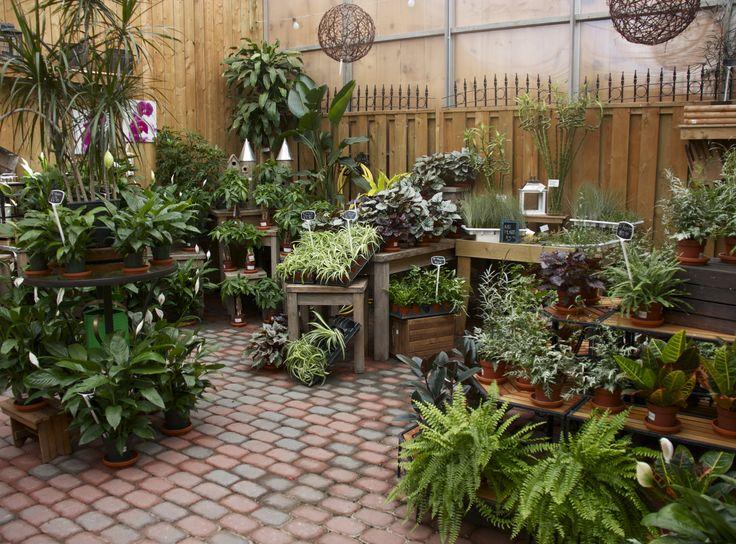 306 Best Images About Garden Center Merchandising Display