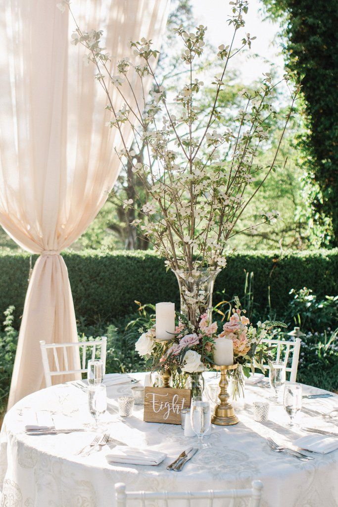 The 507 best centerpieces images on pinterest wedding ideas a wedding centerpiece starring tall flowering branches junglespirit Choice Image