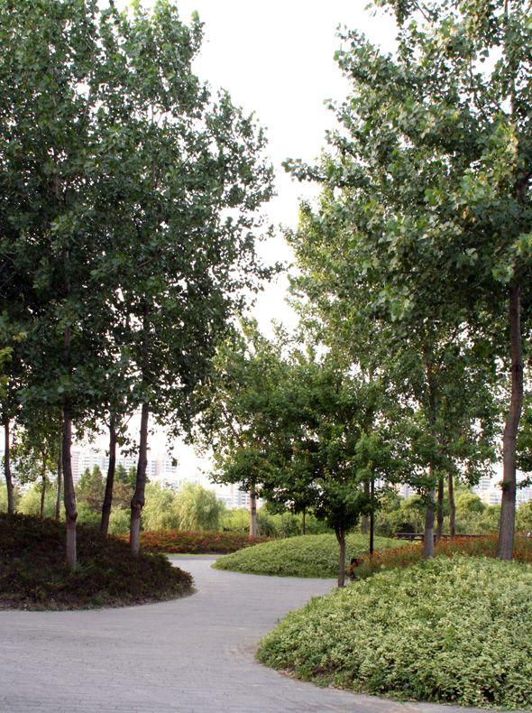 Jardin de Montréal à Shanghai Shanghai, China