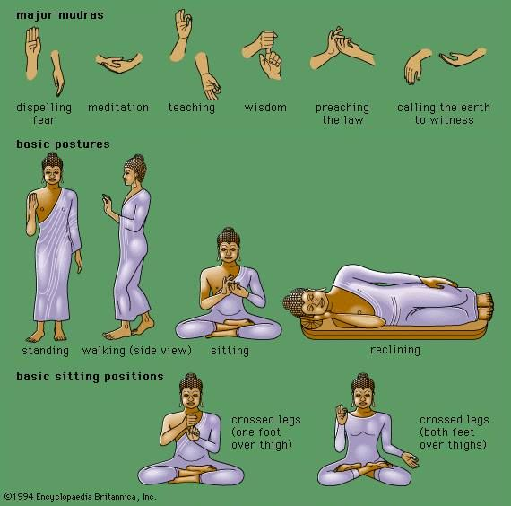 #Buddha postures and thier meanings. #buddhism #meditation