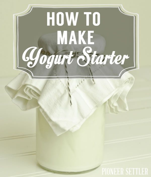 Homemade yogurt starter, easy recipe. | http://pioneersettler.com/how-to-make-yogurt-starter/